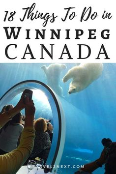 18 Things to do in Winnipeg. Not so long ago, Winnipeg was a place most international visitors passed through on the way to see the polar bears in Churchill. Lake Winnipeg, Canadian Holidays, Stuff To Do, Things To Do, Canadian Travel, Cool Places To Visit, Travel Photos, Travel Inspiration, Road Trips