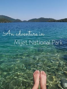 What would a visit to Croatia be without an adventure in the Mljet National Park? A beautiful island off the shores of Dalmatia - Mljet is home to a lagoon that's perfect for anyone who likes nature.