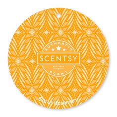 Citrus Rosemary Scentsy Scent Circle $3.  Soothe your minimalist soul with sweet orange, lemon balm and rosemary fig.