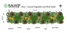 Vegetable Polycultures