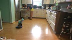 Shark Week. #SharkCat cleaning Kitchen!