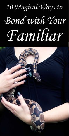 """10 Ways to Bond with Your Familiar Animal (Witchcraft, Paganism) - Moody Moons What is an animal familiar? In European folklore, a """"familiar spirit"""" is an animal or spirit that aided a witch … Magick Spells, Wicca Witchcraft, Wiccan Rituals, Wiccan Witch, Paz Mental, Witchcraft For Beginners, Animal Spirit Guides, Eclectic Witch, Modern Witch"""