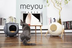 Meyou Is Reconciling Our Cats Needs With Our Design Expectations Cat Furniture Furniture Design