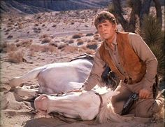 After it becomes injured, Little Joe is forced to shoot the white stallion that he strove so desperately (dodging Indians and fleeing Comancheros) to conduct safely to his pa. From The Gift (Bonanza)