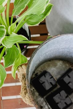 Turn nursery pots upside down in a planter to provided drainage. That's what Lesley Graham did with this hosta plant. It was part of sprucing up her front porch for spring. See it on The Home Depot Blog. || @lesleywgraham