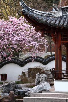 Chinese garden Stuttgart, Germany by Dirk0608