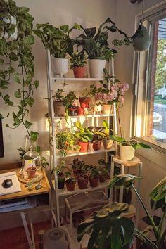 Room Design Bedroom, Room Ideas Bedroom, Bedroom Decor, Bedroom Inspo, Indie Room Decor, Cute Room Decor, Room With Plants, Pretty Room, Aesthetic Room Decor