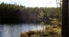 """Ilta metsälammella ©Luonnotar: """"Keväinen patikkaretki metsälammelle huipentui näin upeaan näkymään. Auringon viimeiset säteet olivat juuri painumassa metsän taa."""""""