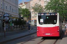 Busse, Public Transport, Vienna, Transportation