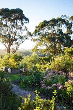 formal cottage garden inspired by a trip to Italy Including the key plants you need for a cottage garden Photo Claire Takacs Story Australian House GardenIncluding the. Cottage Garden Plants, Home Vegetable Garden, Veggie Gardens, Most Beautiful Gardens, Amazing Gardens, Best Garden Tools, Australian Native Garden, Types Of Herbs, Garden Landscape Design