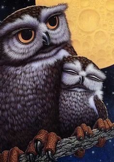 we are family - owls