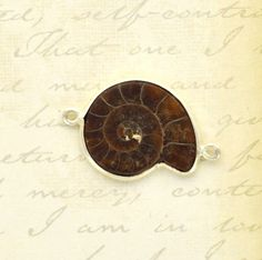 AMMONITE FOSSIL gemstone link connector charm sterling