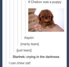 Chekov is a puppy, what are you talking about?