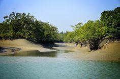 Sundarban Tour Package.(Sundarba Nature Tour) Suraj Das Mob :- 9932780889. visit: http://www.sundarbannaturetour.com