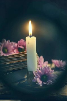 Candels, Candle Lanterns, Pillar Candles, Mary Flowers, Romantic Candles, Beautiful Nature Pictures, Photo Candles, Anime Scenery Wallpaper, Jar Lights