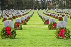 Nine thousand two hundred wreaths lay on the graves of servicemen and women at the Florida National Cemetery in Bushnell, Fla., Dec. 14, 2013. The Wreaths Across America campaign reached over 500 different cemeteries worldwide this year. (U.S. Air Force photo by Airman 1st Class Ned T. Johnston/Released)