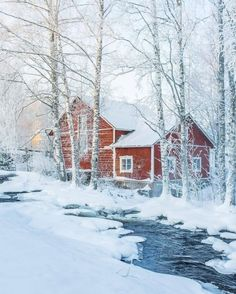 Snow scene is a natural scene that is both pure and romantic. For the photographer, the snowy weather is also a daunting environment, and shooting… Winter Magic, Winter Snow, Snow Pictures, Snow Photography, Snow Art, Winter Scenery, Snowy Day, Snow Scenes, Winter Pictures