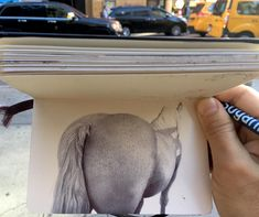 """2,932 Likes, 28 Comments - Nicolas V Sanchez (@nicolasvsanchez) on Instagram: """"Train drawing. Thank you Jim @mr_ann1 for taking me to see these horses!!🙏🏼🙏🏼🙏🏼 #drawing…"""""""