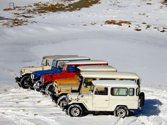 BJ44, BJ45 Troopy, BJ42, BJ44 or 46 and a couple FJ/BJ42s
