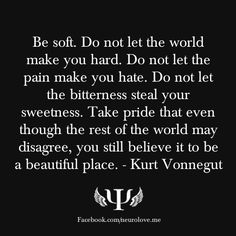 Be soft. Do not let the world make you hard. Do not let the pain make you hate. Do not let the bitterness steal your sweetness. Take pride that even though the rest of the world may disagree, you still believe it to be a beautiful place. - Kurt Vonnegut
