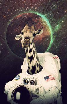 Girafronaut Poster, Giraffe Astronaut Space Print $18