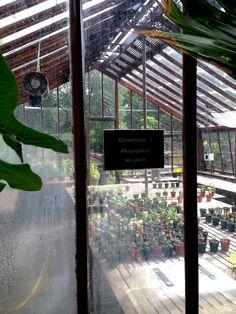 London, Chelsea Physic Garden