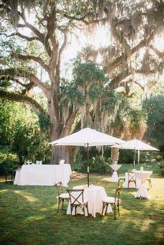 Sweetgrass Social wedding at Legare Waring House. Amanda & Matt. Table and bar under mossy oak tree.