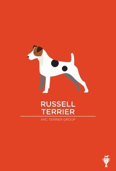 Update: Russell Terrier