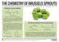 Compound Interest Explains Why a Love of Brussels Sprouts May Be Genetic
