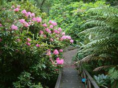 Gardening:Sunny Botanical Gardens Design Tricks Real Estate Gardening Decor Home Exterior Decoration House Garden Ideas Botanic Gardens  8 Design Tricks From Sunny Botanical Gardens