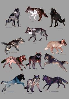 Wolfs Mega pack ADOPT OPEN by Furrirama Cute Fantasy Creatures, Mythical Creatures Art, Magical Creatures, Cute Animal Drawings, Cute Drawings, Anime Animals, Cute Animals, Tier Wolf, Anime Wolf Drawing