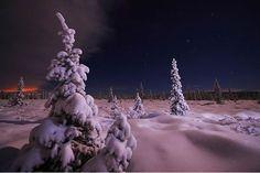photographies de paysages d'hiver 461