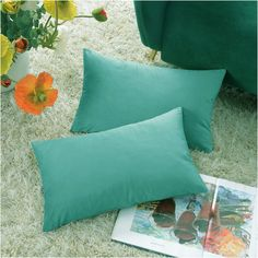 COMFORTLAND New Year/Christmas Decorative Pillow Covers Teal Green: 2 Pack Cozy Soft Velvet Rectangular Throw Pillow Cases for Farmhouse Sofa Couch Bed Chair Home Decor Decorations Decorative Pillow Covers, Throw Pillow Covers, Pillow Cases, Velvet Cushions, Teal Green, Lumbar Pillow, Cushion Covers, Indoor Outdoor, Couch Sofa