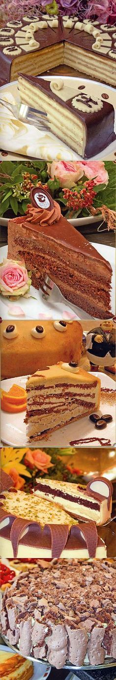 Recipes of German cakes
