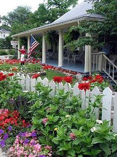 picket fence, red zinnias