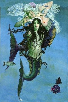 From The Little Mermaidillustrated by Charles Santore.