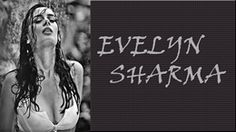 Evelyn Sharma Very Hot Looks Desktop Wallpapers