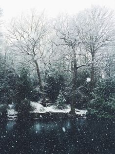 Snow fall on the river.