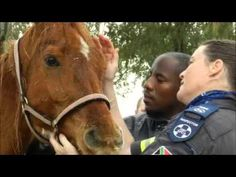 NSPCA Share the Love