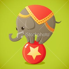 Cute Dressed up circus elephant on a ball