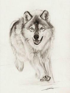 Running Wolf by ~AmBr0 on deviantART