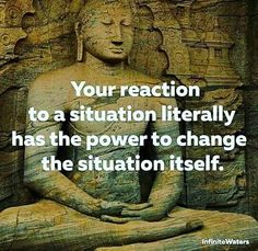 Your reaction, be it, words of anger or sadness, is what the alienator thrives on. Sometimes removing your reaction leaves them with nothing to twist.