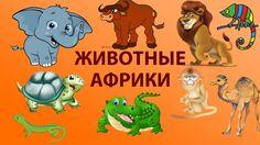 ЖИВОТНЫЕ АФРИКИ видео про животных Африки. Развивающее видео для детей. ...