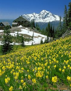 Granite Park Chalet in Glacier National Park.....  can't wait to go this July! My 3rd visit to this glorious place!