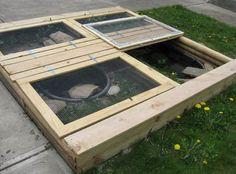 Homemade Turtle Tanks: How to Create Pet Turtle Habitats at Home