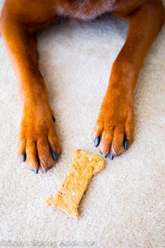 Homemade Peanut Butter & Bacon Dog Treats | 16 Treats You Should Make For Your Dog This Summer