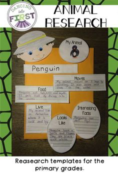 Animal Report Poster Form  Animal School And Animal Habitats