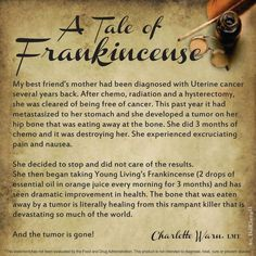 Killing cancer & bone healing with Young Living Frankincense Essential Oils! Yl Oils, Frankincense Essential Oil, Doterra Essential Oils, Essential Oil Blends, Essential Oils For Cancer, Sacred Frankincense, Young Living Oils, Young Living Essential Oils, Young Living Frankincense