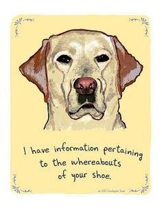 LOL. We had a few shoes that bit the dust from our Cheyenne's teeth, but with an abundance of chews and toys, she doesn't do that anymore