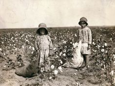 """""""Jewel and Harold Walker, 6 and 5 years old, pick 20 to 25 pounds of cotton a day"""" in Comanche County, Okla., 1916."""